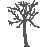 tree-SueP